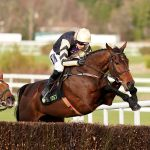 Willie Mullins plans four Cheltenham Gold Cup runners
