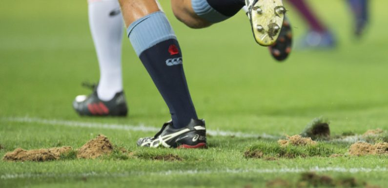 SCG Trust to replace turf ahead of Roosters-Rabbitohs match