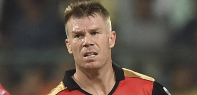 'Not a ripple': Smith, Warner tipped for warm return to IPL