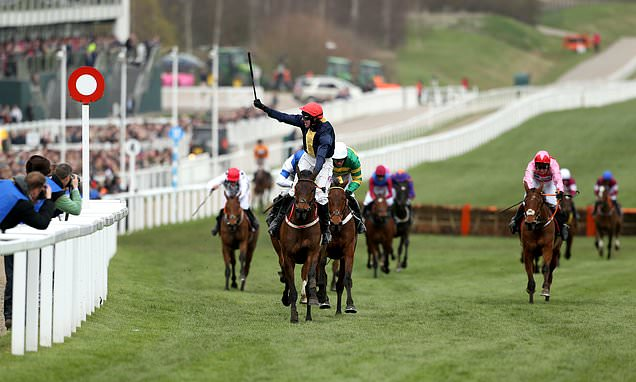 City Island wins Ballymore Novices' Hurdle at Cheltenham Festival