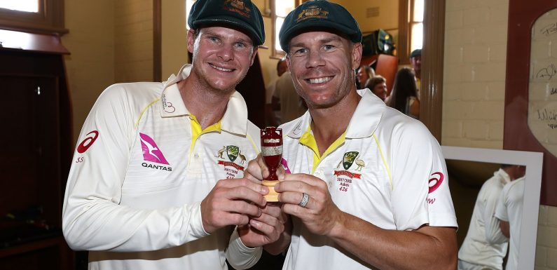 Steve Smith and David Warner to play in IPL when ball-tampering bans end this month