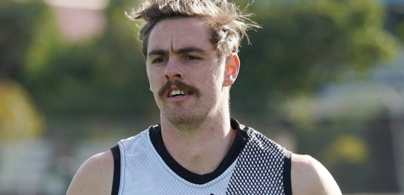 Heppell hopes Daniher is back for North match