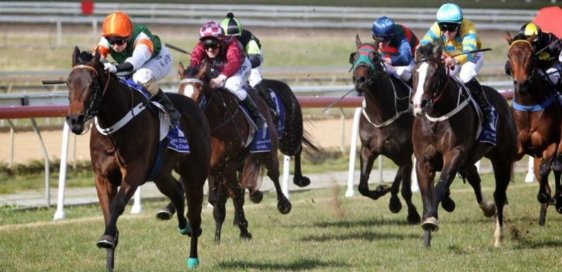 Race-by-race guide and tips for Goulburn on Friday