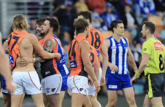 Security at Blundstone Arena to receive additional training after blunder