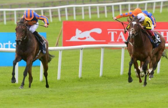 Hermosa faces nine rivals in Coronation Stakes