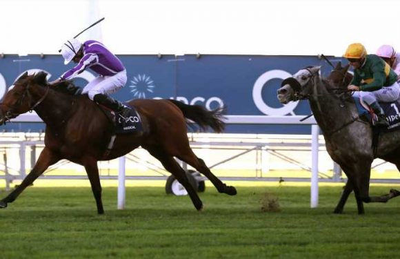 Magical primed for clash with Sea Of Class