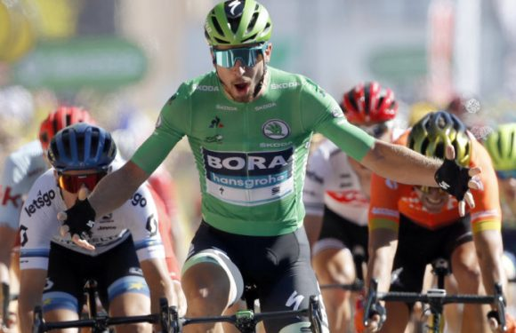 Sagan claims Tour de France fifth stage, Alaphilippe retains yellow