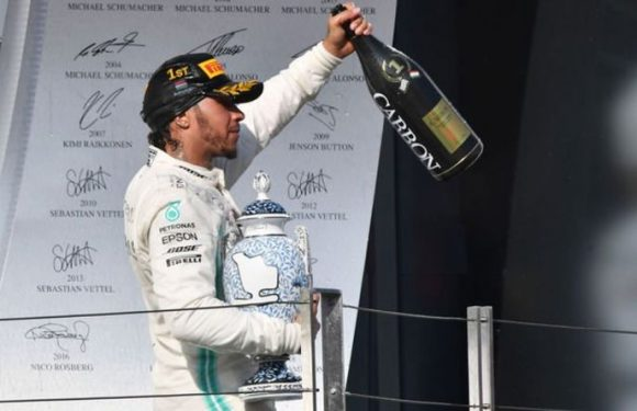 Lewis Hamilton explains how he overcame worry to beat Max Verstappen to Hungarian GP win