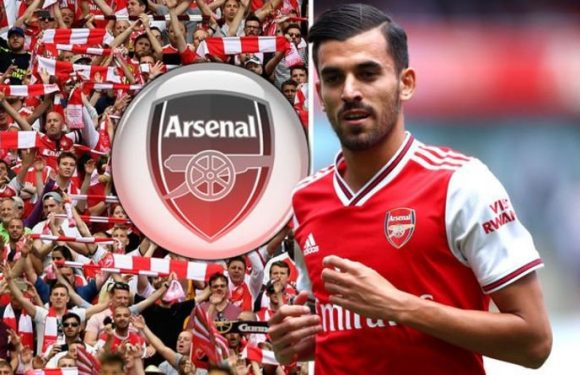 Arsenal fans will love what Dani Ceballos said after 'special' Gunners debut vs Burnley