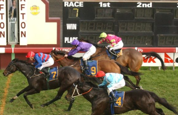 Race-by-race preview and tips for Grafton on Monday