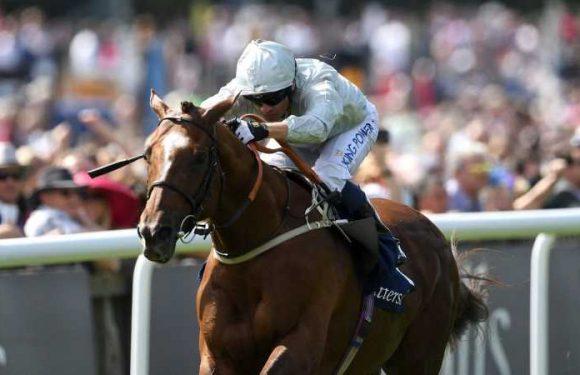 Communique chasing Group One glory in Germany