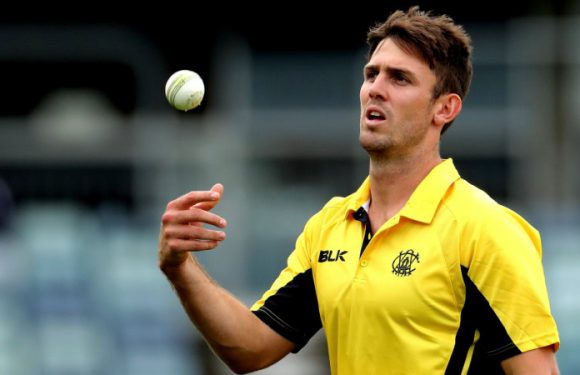 'It's uncharacteristic of me to punch a wall': Marsh repents