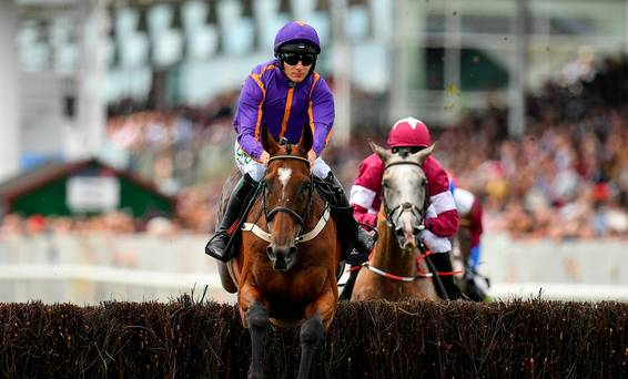 'It's a sad day' – Remarkable horse Wicklow Brave dies after fall in American Grand National