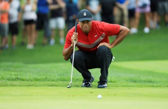 Tiger's back again … but is he really ready?