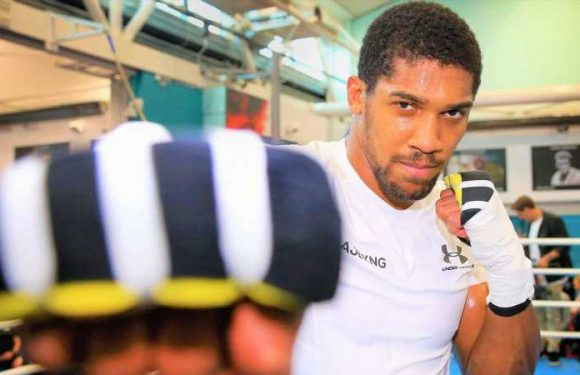 Ruiz vs Joshua 2: Anthony Joshua welcomed to spar with rising US contender Jermaine Franklin