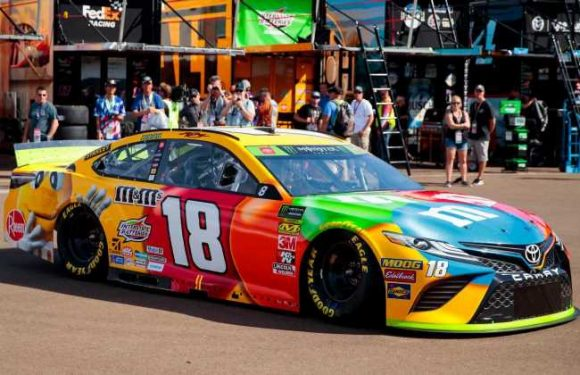 NASCAR at Phoenix 2019: Schedule, lineup, TV, more for Bluegreen Vacations 500 playoff race