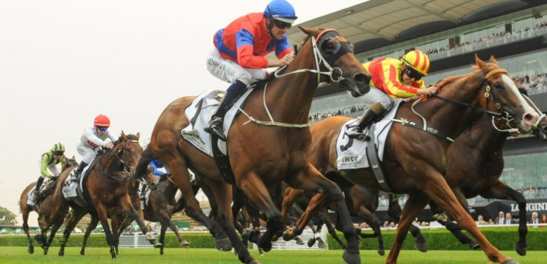 Quackerjack hangs on in Villiers to book Doncaster start