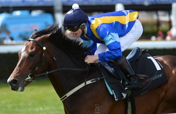 Modest Tuncurry opener looks a done deal for Newcastle mare
