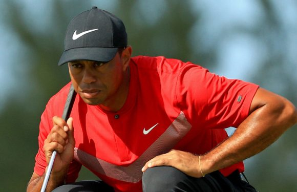 See Tiger Woods while you can, says Presidents Cup boss