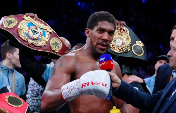 Anthony Joshua responds to Deontay Wilder criticism after Andy Ruiz Jr win