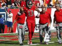 Bucs WR Mike Evans (hamstring) done for season