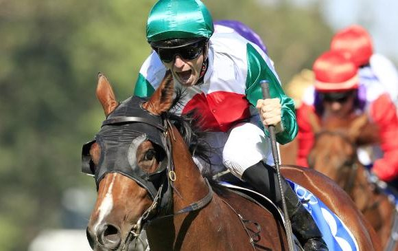 Magic Castel ride: All Star carrot for Sydney colt