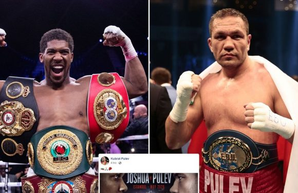 Anthony Joshua not set to face Kubrat Pulev in May despite fight 'confirmation'