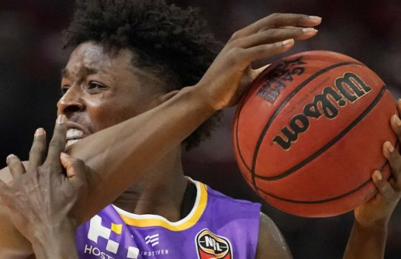Sydney Kings take the bite out of in-form Cairns Taipans