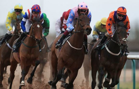 Robin Goodfellow's racing tips: Best bets for Friday, January 24
