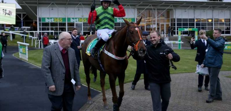 Definitly Red set to carry top weight in Peter Marsh