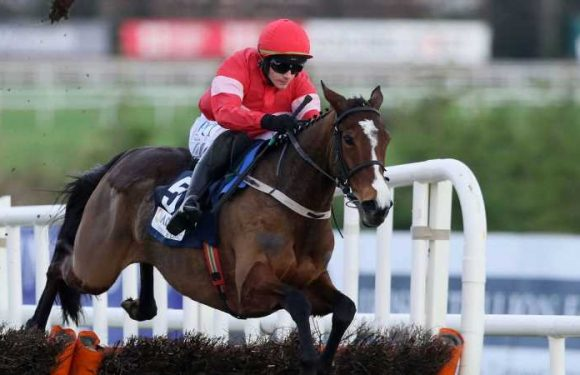 Allaho eases to victory at Fairyhouse