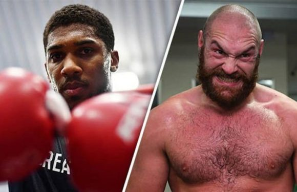 Boxing news: Anthony Joshua vs Tyson Fury prediction, Conor McGregor message, Whyte's vow