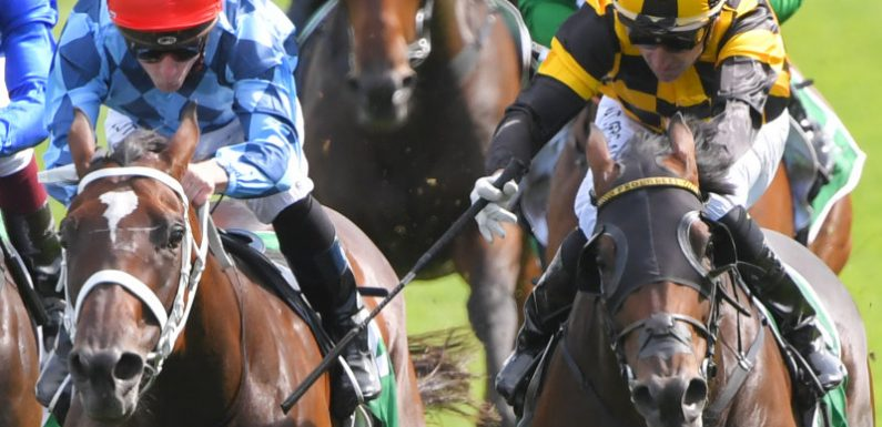 Probabeel proves the real deal in Surround Stakes shootout