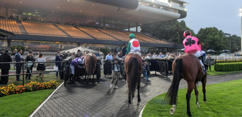 Race-by-race tips and preview for Canterbury Park on Friday night