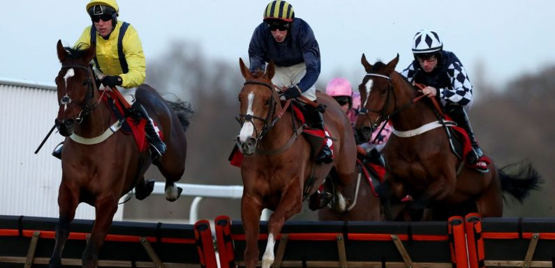 Racing tips for Saturday at Ascot, Lingfield, Haydock, Wincanton and Newcastle