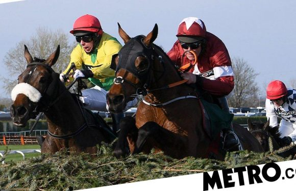 Grand National 2020 sweepstake kit: Download your guide