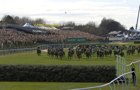 """Punters can bet with """"total confidence"""" on Virtual Grand National"""