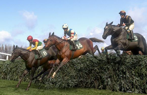Virtual Grand National 2020 sweepstake kit featuring the 40 runners