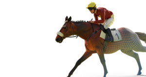 Virtual Grand National odds: Pinsticker guide for all 40 runners