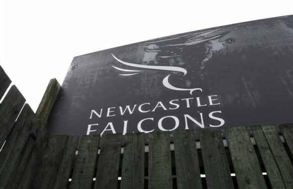 Coronavirus: Newcastle Falcons set for promotion after Championship season called off