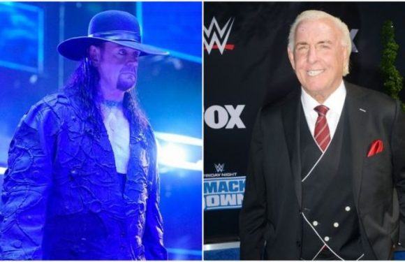 Ric Flair names WWE superstar Undertaker should face before retirement