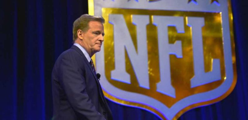 Roger Goodell acted on his own to produce NFL video on protests, report says