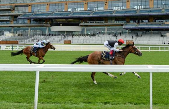Frankly Darling aiming for Oaks victory