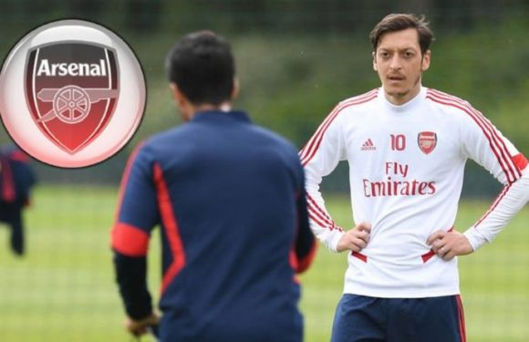 Mesut Ozil fumes at Mikel Arteta over Arsenal exile and makes strong back injury claim