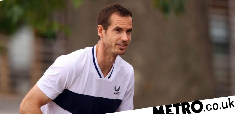 Andy Murray 'willing to take risk' with US Open after years of injury hell