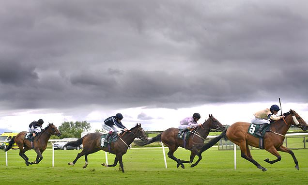 Robin Goodfellow's Racing Tips: Best bets for Monday, September 14