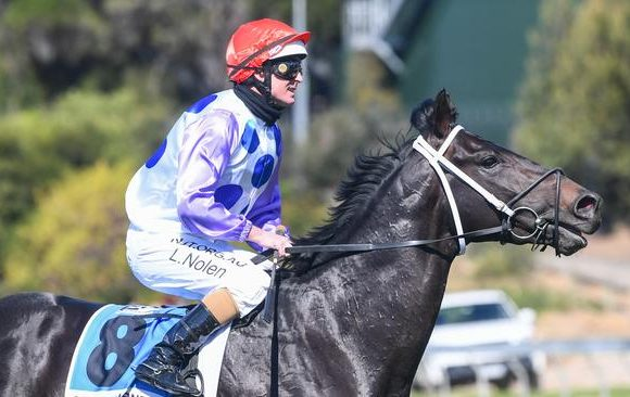 Phillip Stokes hoping to be on Cloud nine with Guineas hopefuls