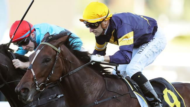 All-Aged Stakes winner Tofane will be trying to cement a place in The Everest via the Bobbie Lewis Quality at Flemington.