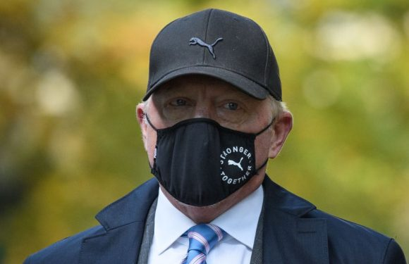 Boris Becker accused of failing to hand over Grand Slam trophies to settle debts