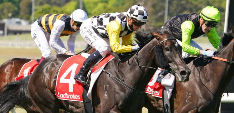 Kah stars with two feature race wins at Sandown